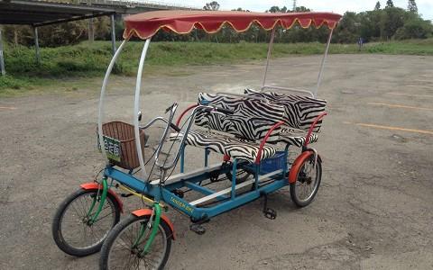 桃園新屋-綠色走廊腳踏車《4人座四輪敞篷車優惠租用(鼓煞)》-預約