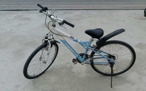 台東-環鎮自行車店《基本單車優惠X1》-台東預約