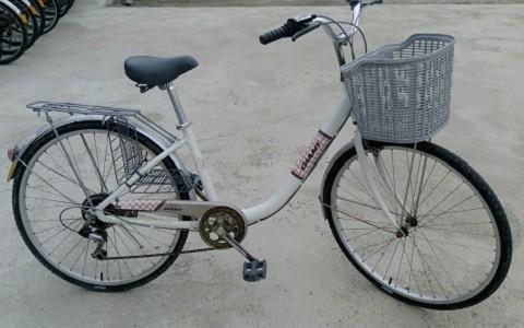 台東-環鎮自行車店《變速單車優惠X1》-台東預約